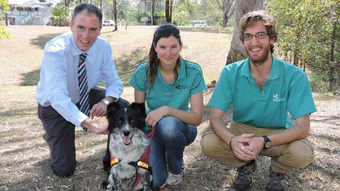 TRACK STAR: Boarder collie Maya poses with Cr Gerard O'Connell (L), Dr Romane Cristescu and PhD student Anthony Schultz.