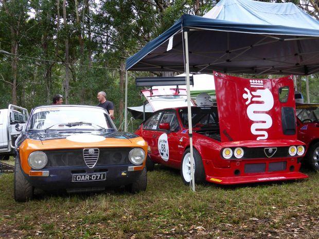 Alfa Romeo racers at the Mid Year Noosa Hill Climb. Photo: Iain Curry