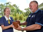 Lone Pine seedling gifted to students