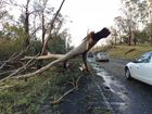 'Mini cyclone' strikes Fernvale township