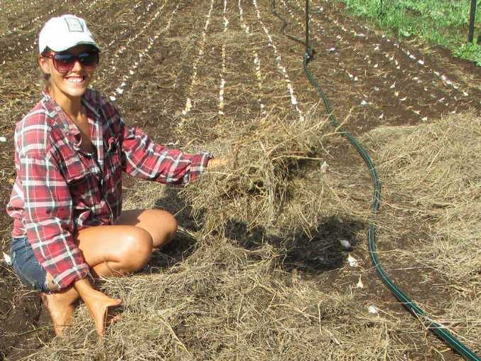 Kyogle organic farmer Sasha Welker