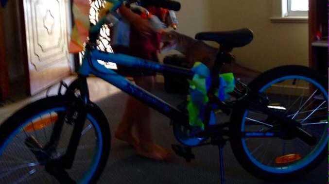 The stolen bike.