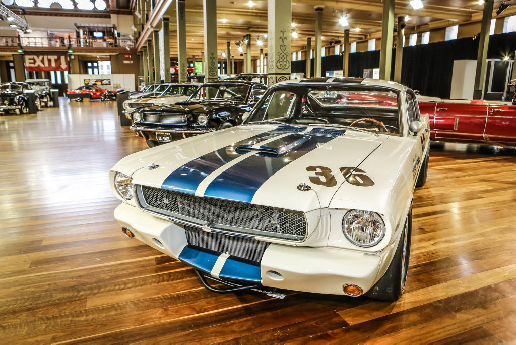 HALF CENTURY: Motorclassica helped celebrate 50 years of the Shelby Mustang.