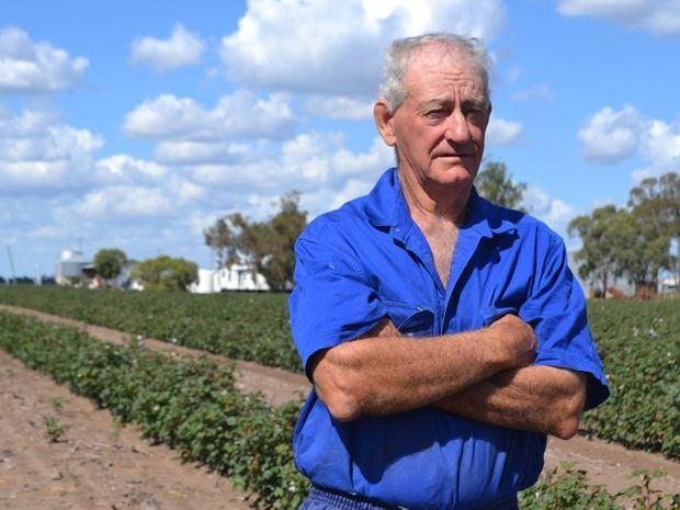 TOO CLOSE: Hopeland farmer George Bender stands 200m from his life-long family home. He said that was too close for any gas company activity. Photo Emma Heron / Chinchilla News