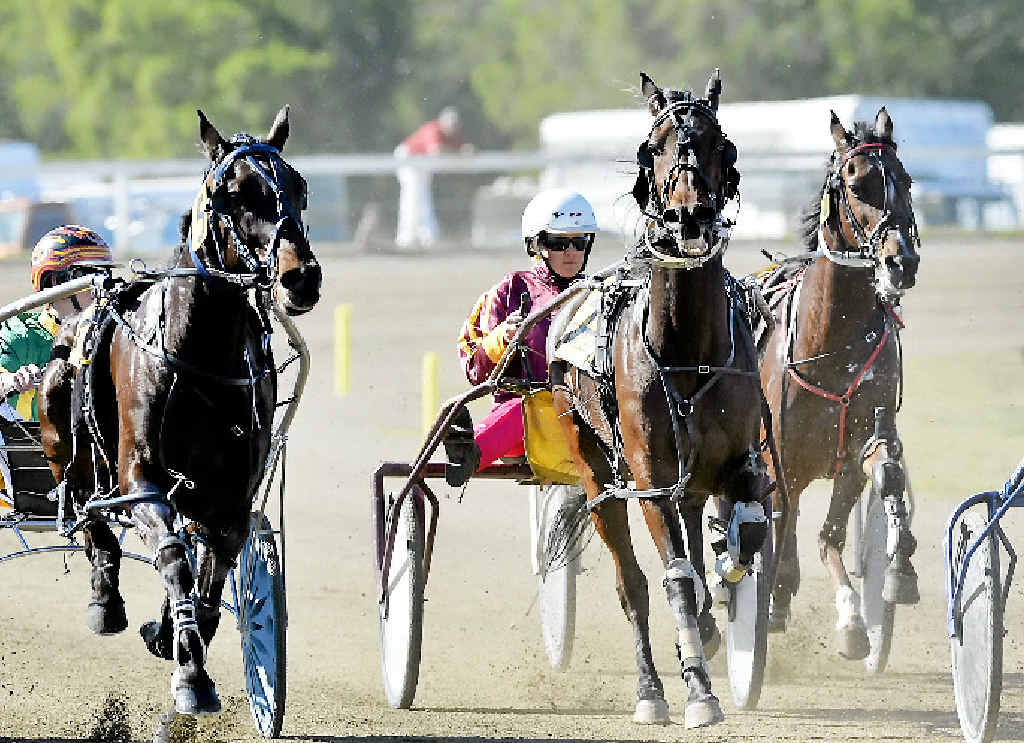 TROTS: The Gympie Turf Club welcomes harness racing back to the track for Melbourne Cup race day on Tuesday. Contributed