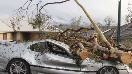 DESTROYED: This car was off to the scrap metal merchants after a tree destroyed it during the Fernvale storm.