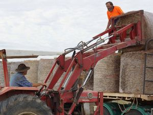 Big $10,000 boost for drought-stricken Longreach