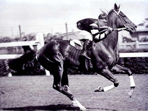 Phar Lap: What you don't know about our favourite horse