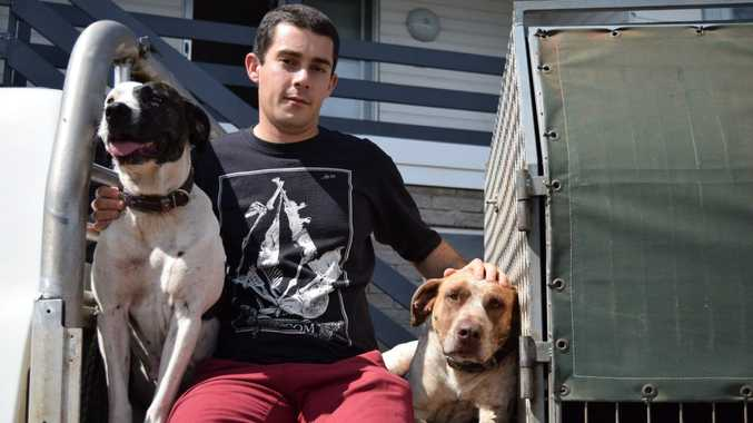 Tristan Thompson with pig dogs Molly and Izzy. Photo Declan Cooley / The Observer