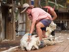 Women just have to work smarter, not harder says Nat Daniels from Wyngarra, Gore. Photo Chantel Renae Photography.