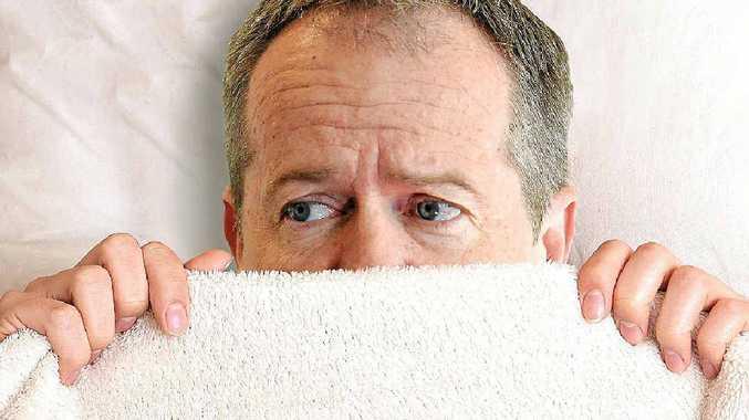 TURNING ON THE BULL: Labor leader Bill Shorten has nightmares of the Turnbull variety.
