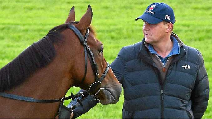 OH LA LA: Trip to Paris and trainer Ed Dunlop. The horse is the hot favourite with rank-and file punters in early betting for today's Melbourne Cup.