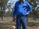 Local sheep dog competitor Roy Potticary has been selected for the Australian Team with his border collie Delrae Eddie.