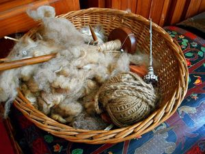 Spinning a new hobby with wool