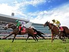 More needs to be done to fix country racing