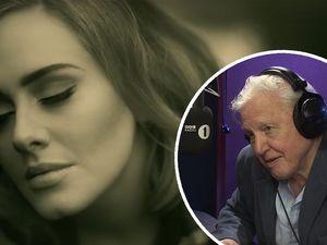 WATCH: David Attenborough narrates Adele's 'Hello' video