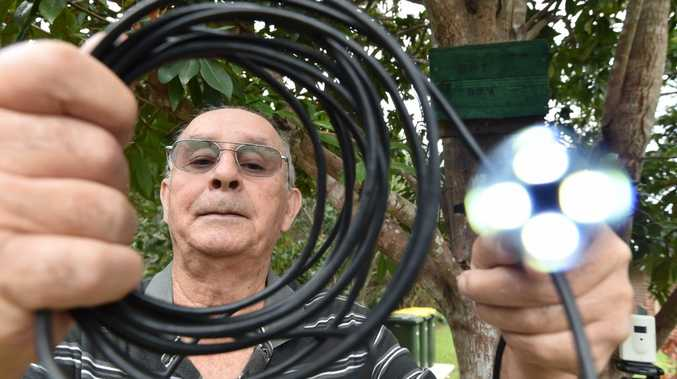 John Parsons with his endoscope and a bat box on the tree behind him. Photo: Alistair Brightman / Fraser Coast Chronicle