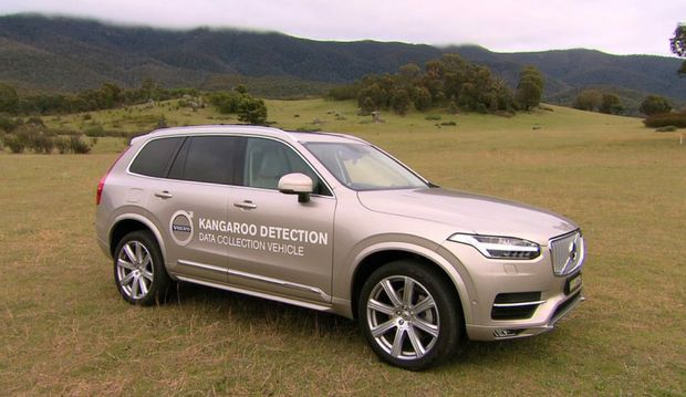 SAFETY FIRST: New XC90 taking part in kangaroo detection tests in the ACT.