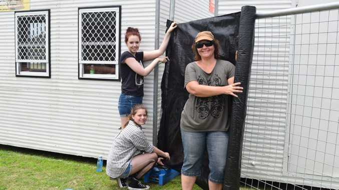 HOT WORK: Charlotte Webster,Dayna Gilmore and Corinne Batt-Rawden volunteers at work on the festival site. Photo Erica Henderson / Coolum & North Shore News