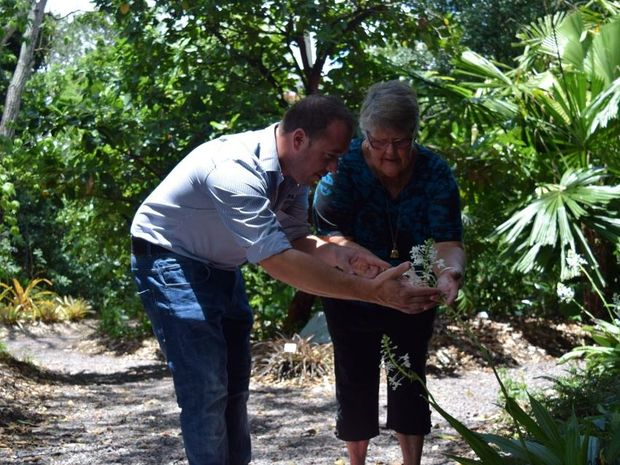 Mackay Regional Botanic Gardens curator Richard Brown shares tips from long-time resident and gardener Patsy Crawford.
