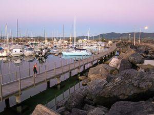 Work on Coffs marina boardwalk begins on Monday