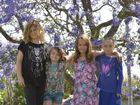 Little town blooms for jacaranda fest