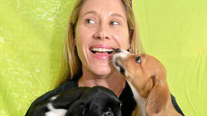 DESEX: Penny Brischke from the Sippy Creek Animal Refuge says dogs will now join cats in the DeSex in the City campaign.