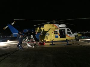 Teenager airlifted by coast chopper following snake bite