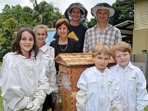School a buzz as hive arrives