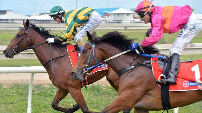 THE WINNER: Mackay-trained and Rocky owned horse Cyclone Aleysa won race one yesterday at the Mackay Turf Club.