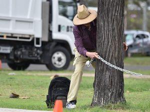 Protester halts lorikeet tree cut at Scarness Caravan Park