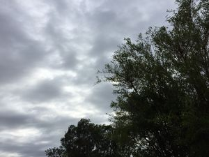 Windy weekend with showers expected on Fraser Coast
