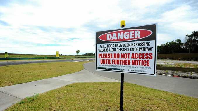 Wild dog sign in Casuarina. Photo: John Gass / Tweed Daily News