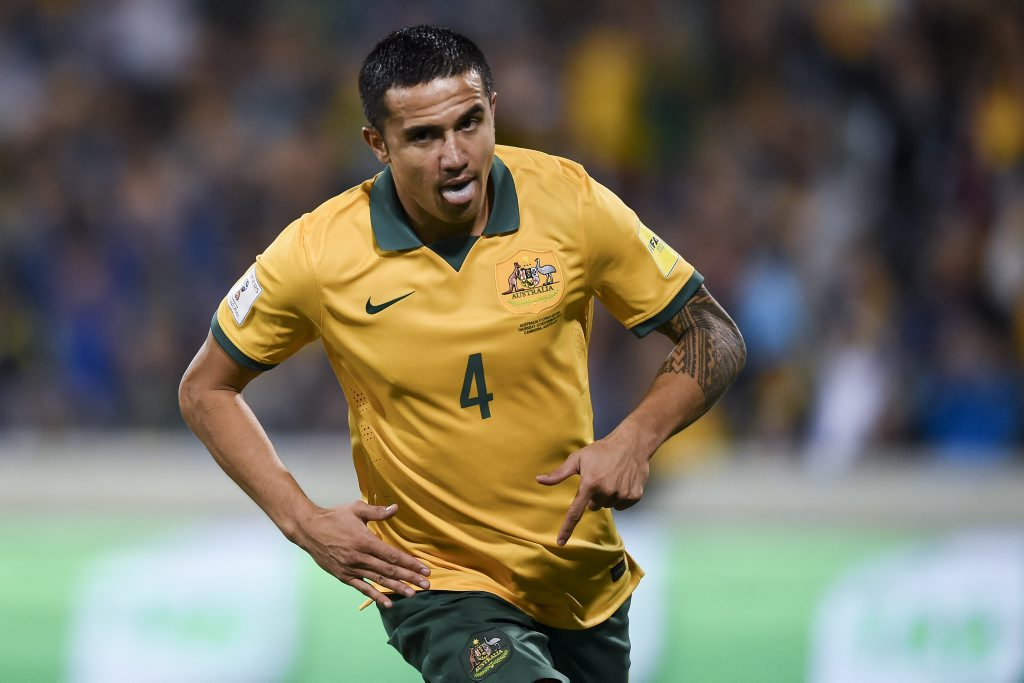 Tim Cahill after scoring at the GIO Stadium in Canberra last week. Photo: AAP Image/Lukas Coch.