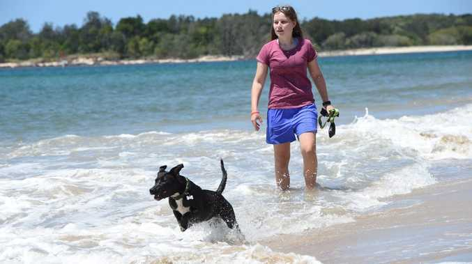 Ashleigh Smith plays with Charli at the Spit in Ballina as temperatures across the Northern Rivers rise. Photo Marc Stapelberg / The Northern Star