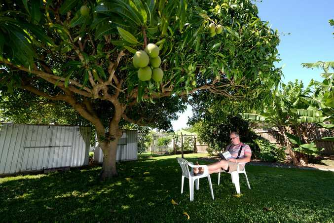 DONOR RECIPIENT: South Bundaberg resident Ron Spann has recently received a donor kidney and been granted a new lease on life. Photo: Max Fleet / NewsMail