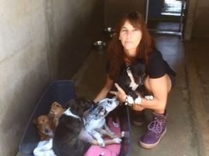 Woman rescues kittens and puppies