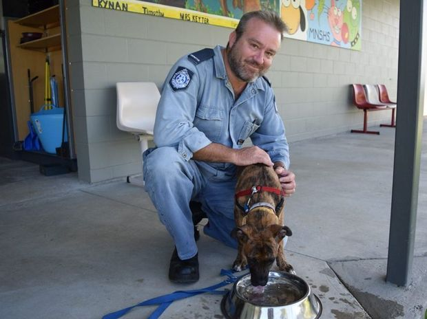 RSPCA Mackay regional inspector David Ferrar talks about heat scare when tying up your pet outside without water. He stands with 4-month old Ridge Back cross Boxer, Badger.