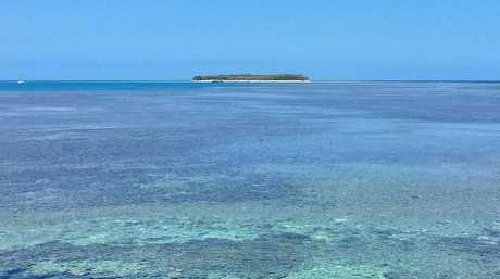 Lady Musgrave Island during the Underwater Instameet on Saturday. Photo: Mark Fitz Photography