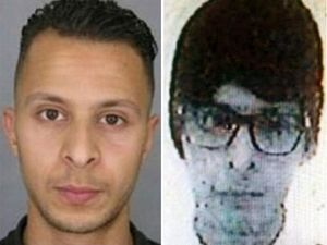 Paris attacks suspect Abdeslam ready to talk to authorities