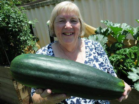 Jill Lampard grew this humongous zucchini.