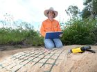 VIDEO: Turtle species eggs under protection in Fitzroy Basin