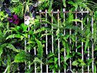 GREEN WALL: Ayden and Jess's vertical garden from The Block Triple Threat featured an old Melbourne Cricket Ground gate.