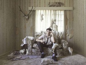 Crazy Cat Man wins Gympie photographer national award