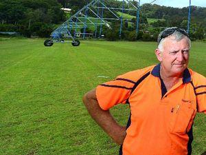 Turf scarce as Christmas lawn scramble continues