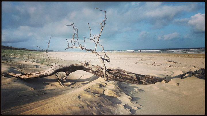 Sally Smith - Airforce Beach, Evans Head
