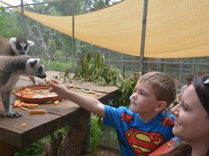 Zoo puts on what might be boy's last birthday