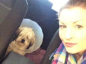 Reader photos: Gladstone's finest pet selfies