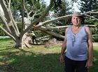 Brisbane Terrace resident Roy Kippen spoke to the QT about the ferocious storm that tore through Goodna on Sunday afternoon. Photo: Rob Williams / The Queensland Times