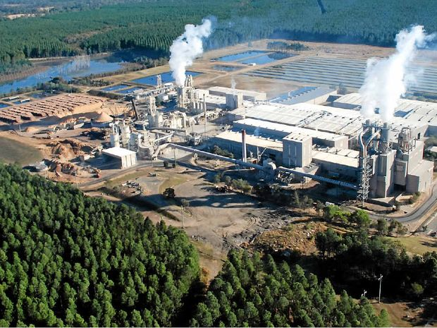 STILL IN BUSINESS: Gympie's Laminex particle board plant on the Tin can Bay Road is back in production after Sunday's fire.